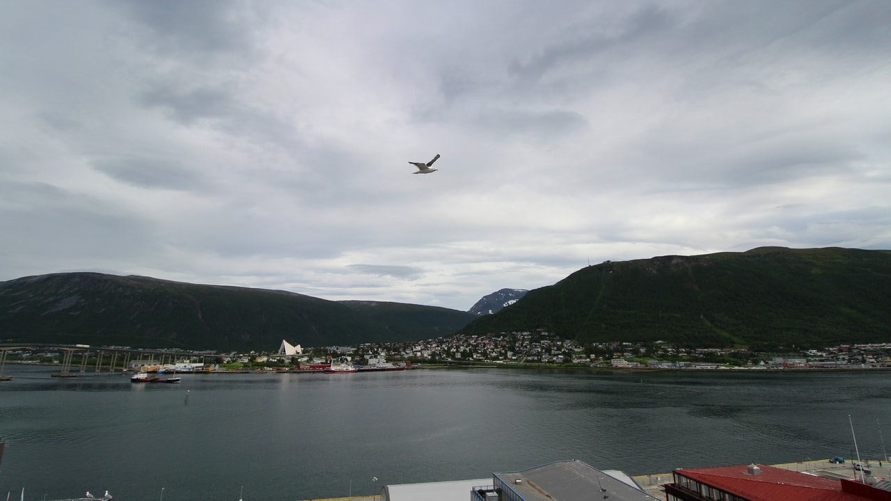Live Tromso Weather Forecast, Stunning HD Webcams and